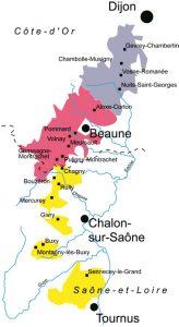 Situé à l'est de la France et doté d'un climat semi-continental, le vignoble bourguignon comprend 30 000 hectares dont 25 000 classés en AOC, plantés sur des sols argilo-calcaires. Il se subdivise en cinq régions, du nord au sud : le Chablisien (département de l'Yonne), la Côte de Nuits et la Côte de Beaune (Côte d'Or), la Côte Chalonnaise et le Mâconnais (Saône et Loire). Il produit 60% de vins blancs secs, 30% de rouges et 10% de vins effervescents (Crémant).